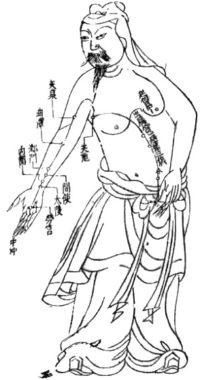 western medicine acupuncture chart